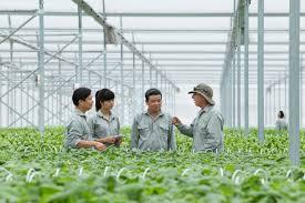 Tư vấn, lập báo cáo ĐTM – DA XD khu sx nông nghiệp sạch kết hợp với du lịch sinh thái Chezbeo